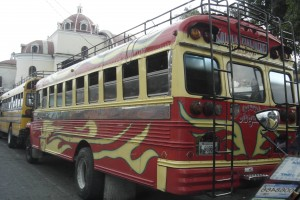 chicken bus1