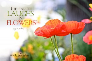 earth-laughs-in-flowers-15