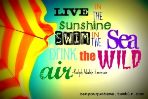 Quotes of summer